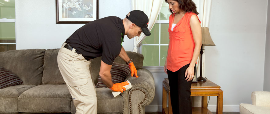 West Greenville, SC carpet upholstery cleaning